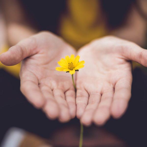 The Joyful Life Blog